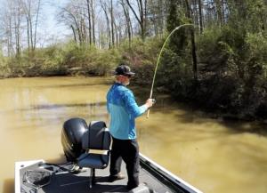 Day 5: Matt Mavigliano Travels South to Fish Mississippi's